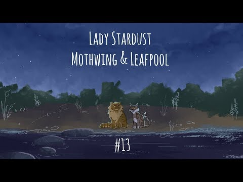 Lady Stardust - Mothwing & Leafpool ||| Part 13 (2 week)