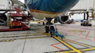 Vietnam Airlines Dreamliner Boeing 787-9  VN-A866 walk around