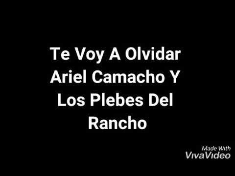 Download Ariel Camacho Y Los Plebes Del Rancho Te Voy A Olvidar (letra)
