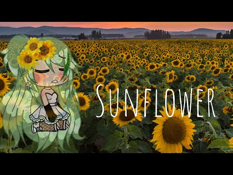 Sunflower // Sierra Burgess // Glmv