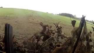 Kragejagt 27-09-2014 / Crow shooting 27-09-2014