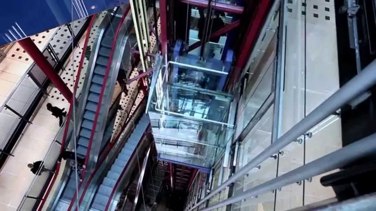 otis elevators essay