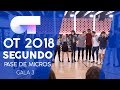 viva La Vida - Grupal | Segundo Pase De Micros Gala 3 | Ot 2018