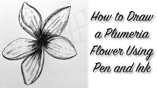 How To Draw A Plumeria Flower | Pen and Ink | BooBooPaintz