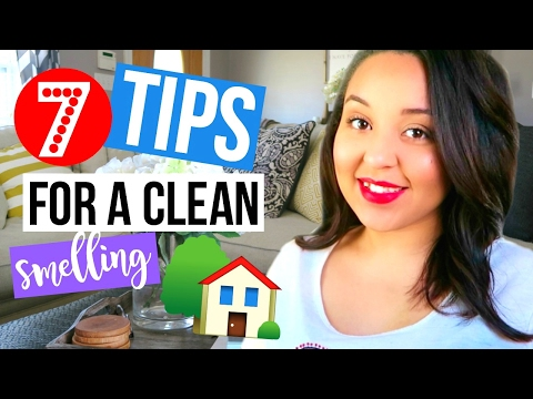7 TIPS TO MAKE YOUR HOUSE SMELL GOOD | HOW TO KEEP YOUR HOME SMELLING CLEAN | Page Danielle