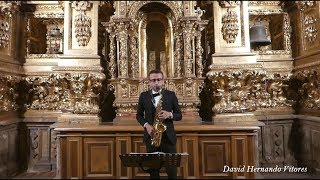 David Hernando Vitores – Joachim Andersen: Etude in G Major, Op. 15 No. 3