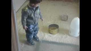 اصغر مطيرجى عراقى فى استرايا
