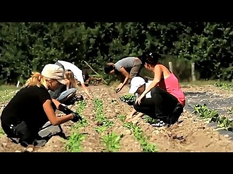 16 Agroécologie en France   Emploi Climat Alimentation
