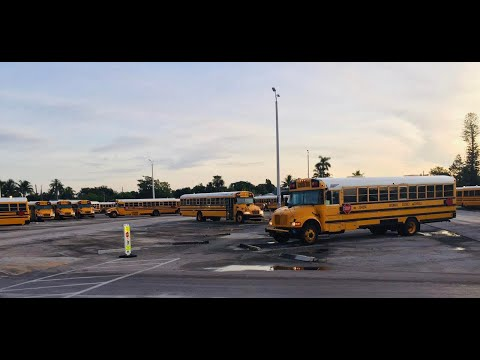 What To Know About School Buses And Traffic Before The First Day Of School