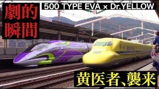 【奇跡】ドクターイエロー&エヴァ新幹線 500系 / Dr.YELLOW & 500 TYPE EVA Miraculous Rendezvous