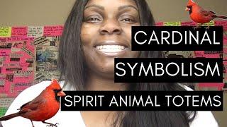 Cardinal Symbolism:: Spirit Animal Totems