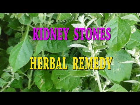 KIDNEY STONES - URINARY CALCULI-HERBAL REMEDY