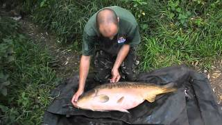 Carp Fishing - Little Eds 32 Lb Ghostie Linear - Sunday 10th July 2011 -  Hd