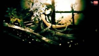 Nightstep - Raindrops Thumbnail