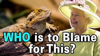 Who Started the Lizard People Conspiracy Theory?