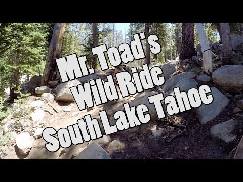 Let's Ride Mr. Toad's Wild Ride  South Lake Tahoe