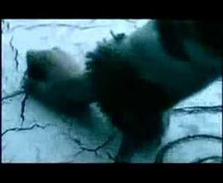 Tragedy-Celldweller (MirrorMask)