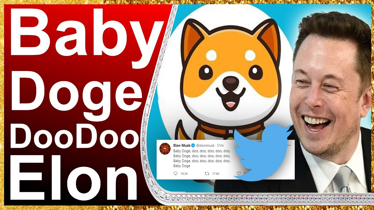 Dogecoin, Baby Doge Coin Prices Spike After Elon Musk Tweets ...