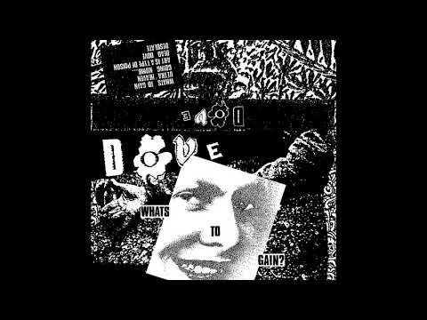 Dove- What's to gain?