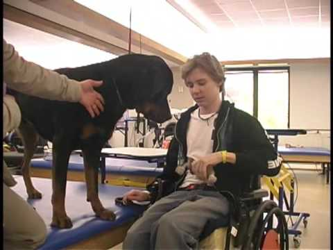 Pet Therapy at Shepherd Center