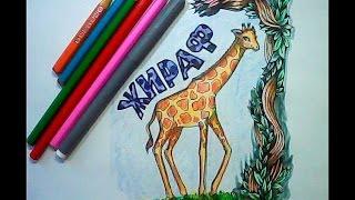 Как нарисовать ЖИРАФА поэтапно /  рисуем животных по шагам