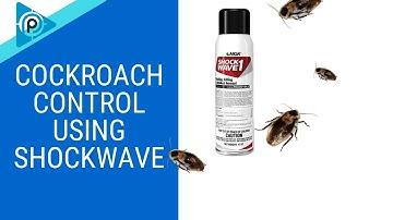 Cockroach Control using Shockwave (Episode 89)