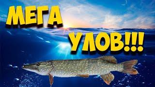 ПОЙМАЛИ ЩУКУ НА 3 0 КГ Рыбалка на спиннинг Рыбалка в Донецкой области