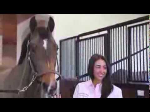 HorseJunkiementary Episode 1 - Maria Costa At Windsor Show Stables