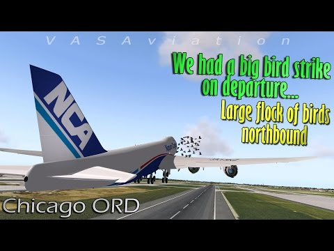 [REAL ATC] Nippon Cargo B748 hits a FLOCK OF LARGE BIRDS | 3D Simulation