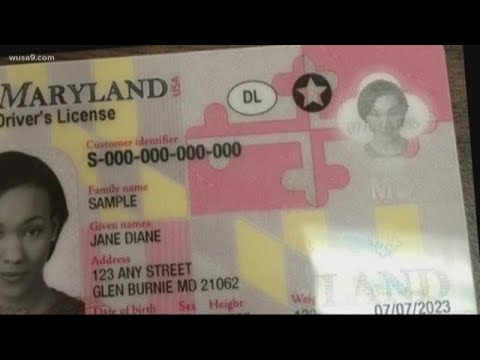 Youtube Recall - Id Real Maryland