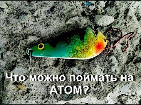 Обзор колеблющейся блесны Атом