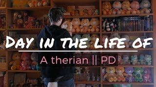 Day in the life of a Therian / PD || [Message in description]
