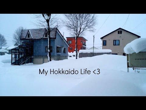 Welcome to My Hokkaido Life