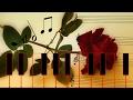 Download 02-II. Menuetto Allegretto 'Canone in Diapason' - Trio MP3 song and Music Video