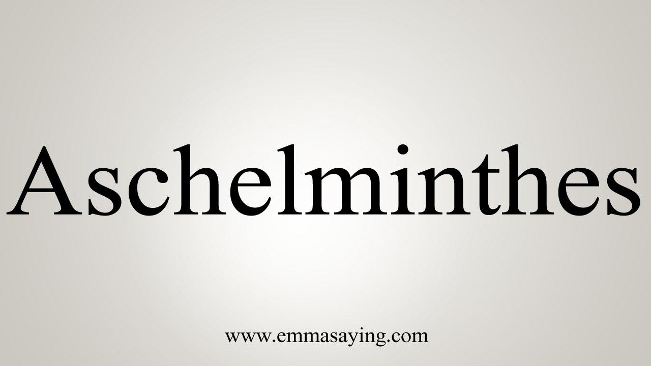 aschelminthes jelentése)