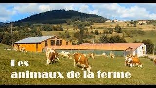 🦃 Les animaux de la ferme et leurs cris
