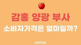 감홍,양광,부사 가을사과 마트 소비자가격은 얼마일까?