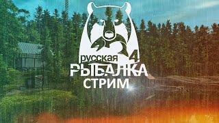 Русская Рыбалка 4 Фарм на точках проверка точек Ловля Амура и Ловля сома на остроге