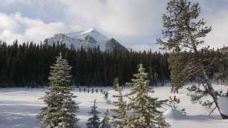 Guided Snowshoeing in Banff National Park - Travel Alberta, Canada