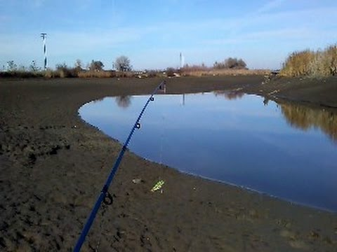 Fishing on partially drained Slough and Canal