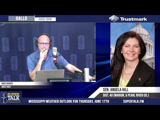 Senator Angela Hill - Critical Race Theory in Schools