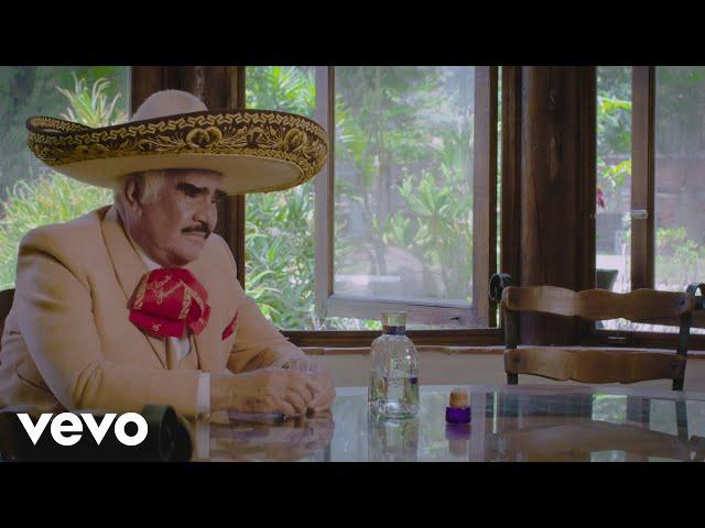 Vicente Fernández - En la Cárcel de Tu Adiós
