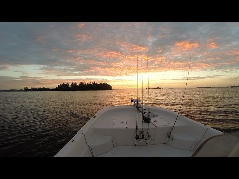 Indian River Lagoon, Catching  Trout And Snook Near Pelican Island, Video By Eyes Of Wings