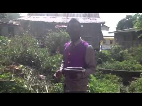 Local news in Grenada
