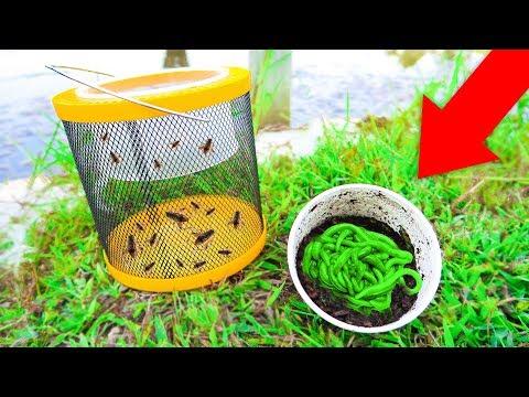 Fishing W/ LIVE GLOW Worms Vs GIANT Livebait CRICKETS (WALMART)