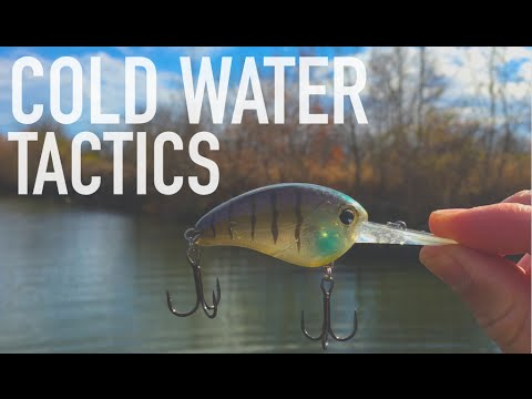 2 Cold Water Tactics You NEED To Try -- Bass Fishing