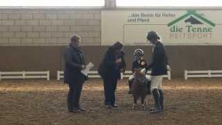 Malu (4) und Veni auf dem Turnier in Montabaur-Horressen am 03.1