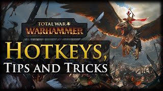 Hotkeys, Tips and Tricks - Total War: Warhammer Gameplay