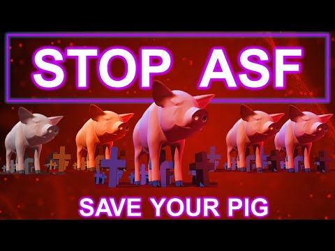 Know About African Swine Fever | A Complete Guide Protecting Your Pigs | Tagalog