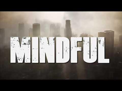 RADIX'S - MINDFUL (lyrics)
